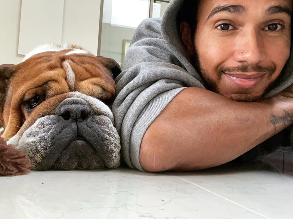 Lewis Hamilton (Mercedes) mit Hund Roscoe. Credit: Hamilton/Facebook